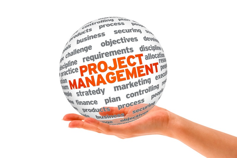 Today project managers use international standards more efficiently (PHOTO)