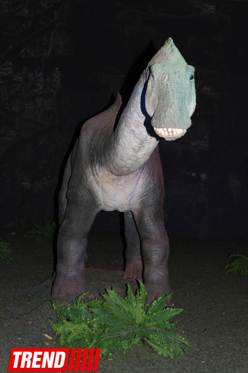 """Bakıda möhtəşəm """"Dinozavrlar şousu"""" açılıb - ulduzlar, uşaq və valideynlərin sevinci (FOTO) - Gallery Image"""