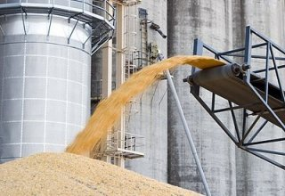 Construction of large grain warehouse in Iran to be completed soon