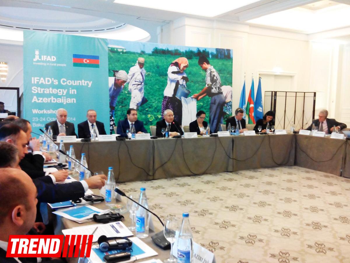Prezident Administrasiyası: Azərbaycanda aqrar sektor inkişafının yeni mərhələsinə daxil olub