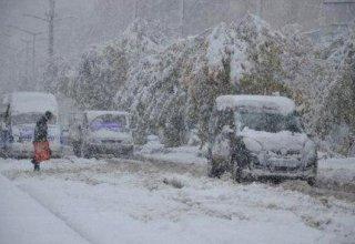 В двух провинциях Турции из-за снегопада отменены занятия