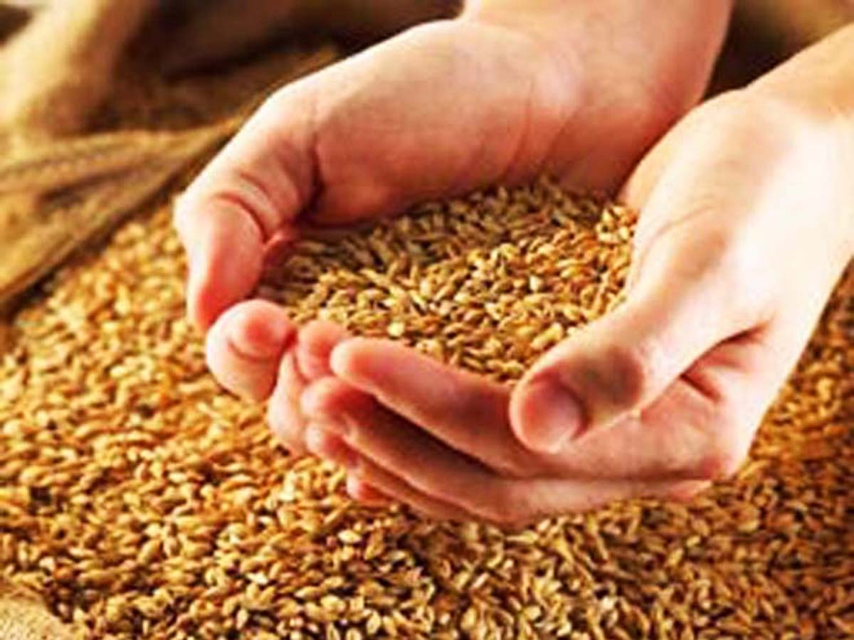 Turkey's export of grain, legumes to Turkmenistan significantly increases