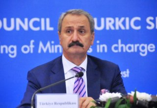 Turkey's former economy minister will not run for parliament