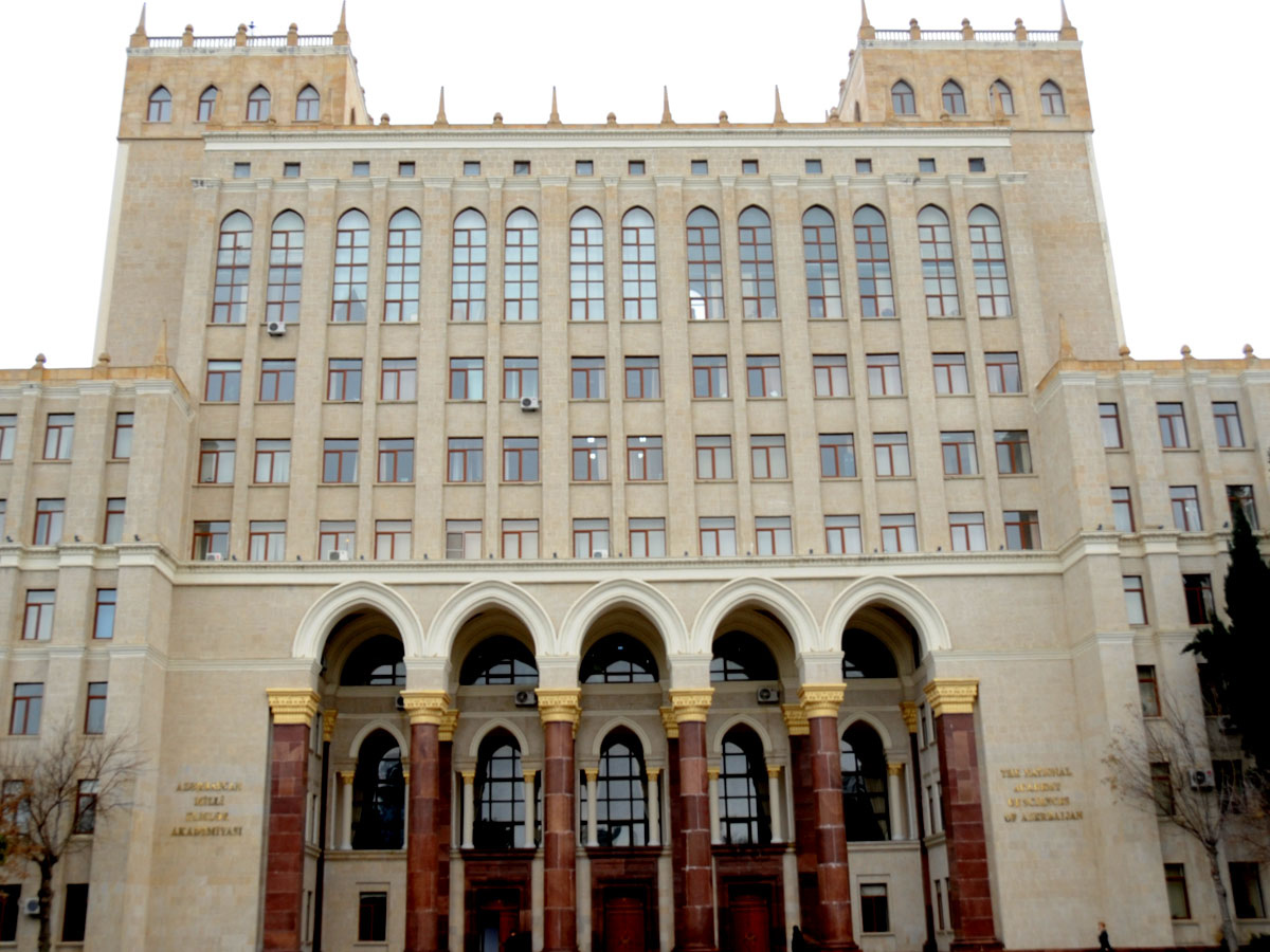 Director of High Tech Park of Azerbaijan National Academy of Sciences appointed