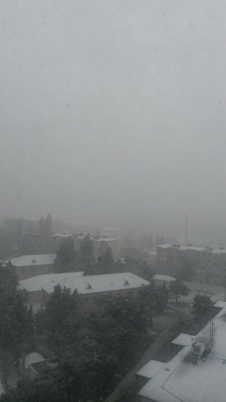 Снегопад накрыл Баку белым одеялом (ФОТОСЕССИЯ) - Gallery Image