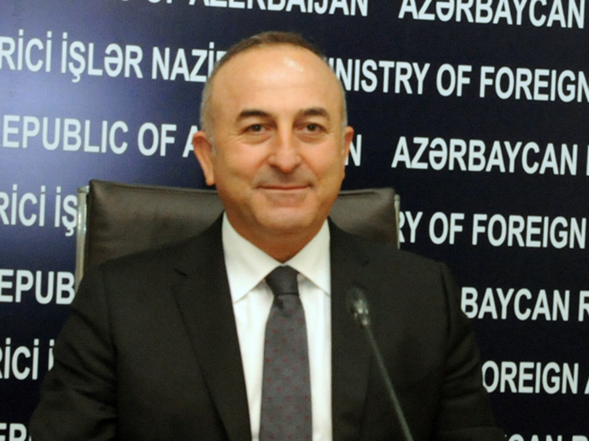 Azerbaijan to make great contribution to G20 - Turkish FM