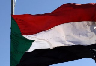 Arab states support Sudan transition, want stability: UAE minister