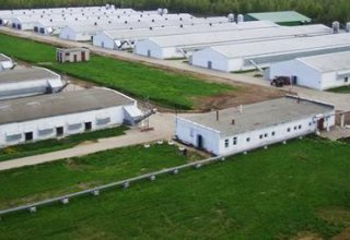 Uzbekistan, China to create joint agricultural science & technology innovation park