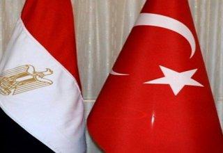 Кто кому больше нужен: Каир Анкаре или наоборот?