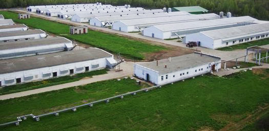 Residents of Azerbaijani agro-parks get investment privileges of 350M manats