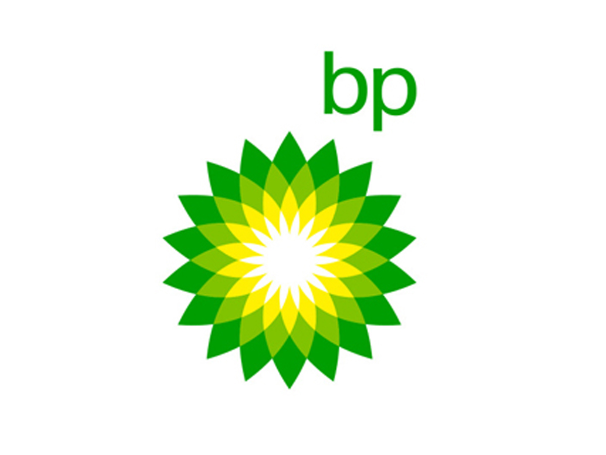 Oil, gas to be big part of energy mix for decades to come - BP