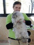 Animal housing and treatment center operates in Azerbaijan (PHOTO,VIDEO) - Gallery Thumbnail