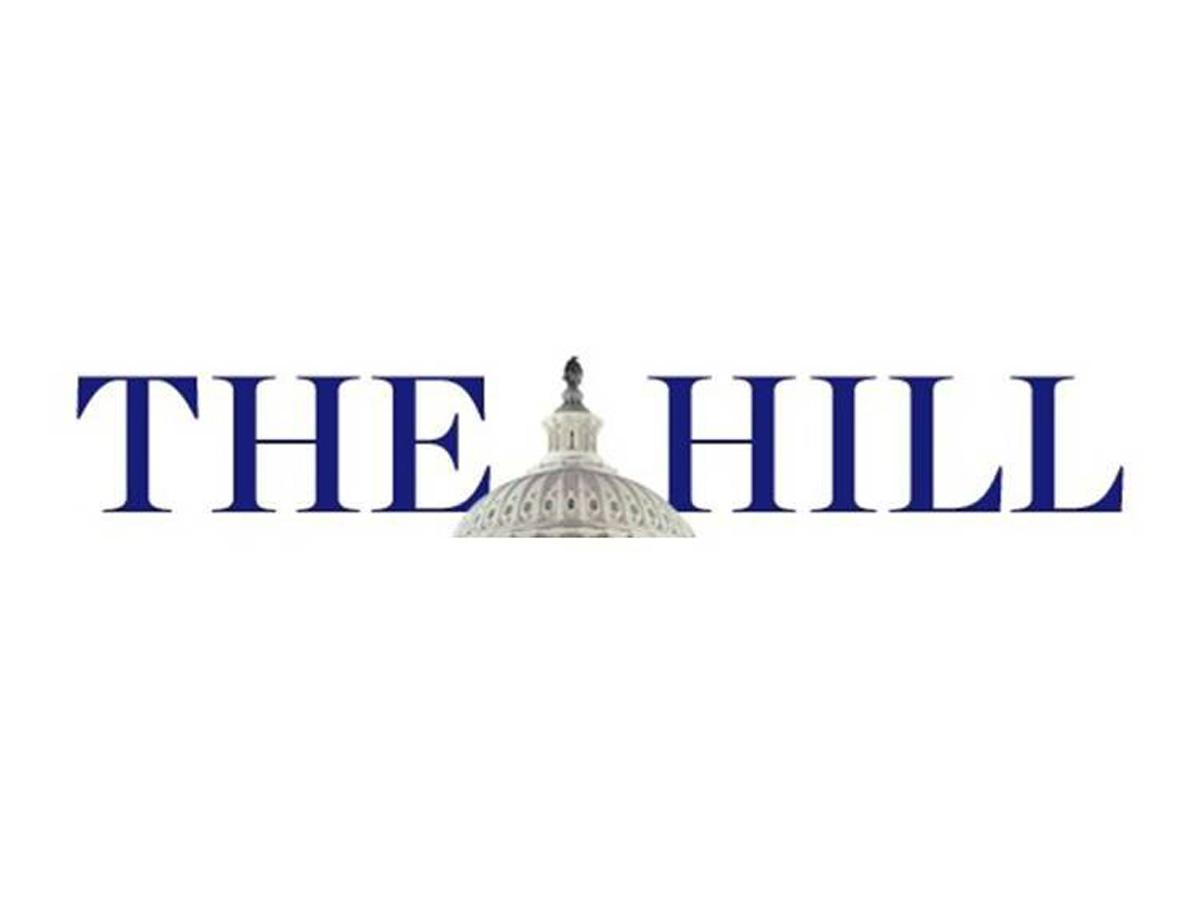 """""""The Hill"""": Qərb QHT-ləri Azərbaycan haqqında məlumatları dəqiqləşdirmə aparmadan dərc edirlər"""