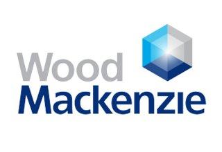 Wood Mackenzie: Global petrochemical industry to enter overcapacity period