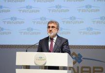 Prezident İlham Əliyev: TANAP ilk növbədə Türkiyə-Azərbaycan birliyinin layihəsidir (ƏLAVƏ OLUNUB) (FOTO) - Gallery Thumbnail