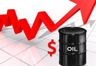 Meeting of oil producers not to lead to rise in oil prices
