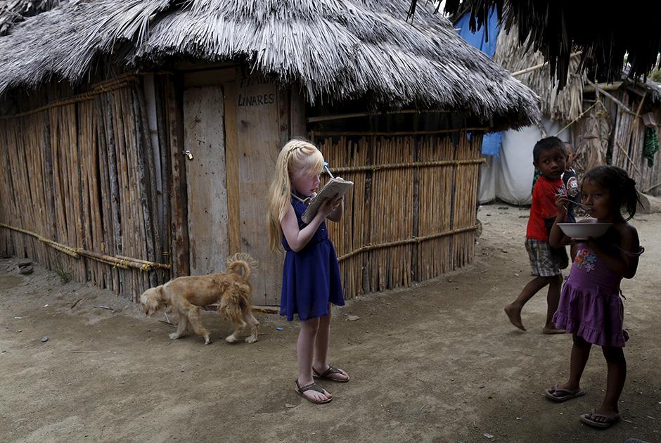 Panamanın fərqli sakinləri (FOTO) - Gallery Image