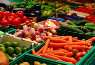 Swiss company increases share in Uzbekistan's fruit, vegetables storage company