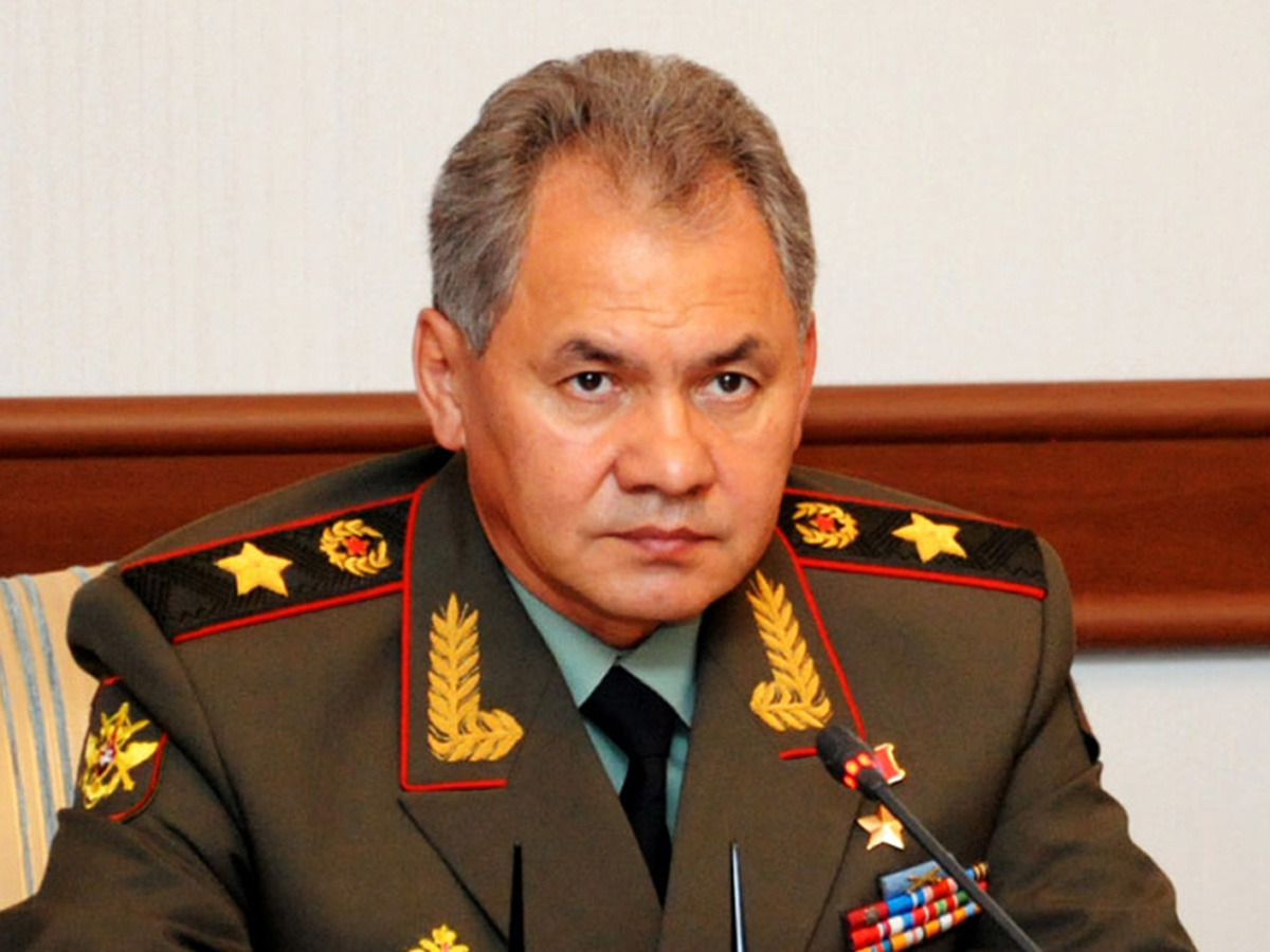 Russia's defense chief urges CIS states to join Syria's restoration