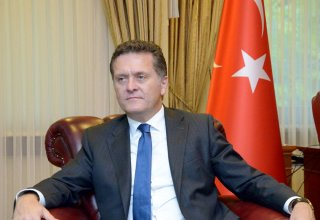 Ambassador: Military coup attempt directed against Turkey's statehood
