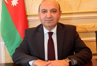 'Some forces, countries do not accept Azerbaijan's model of tolerance'