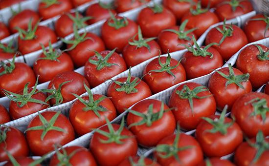 Вопрос поставок в Россию турецких томатов будет обсуждаться 18 августа