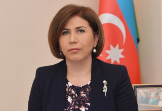 MP: Azerbaijan setting example of holding int'l events at highest level (VIDEO)