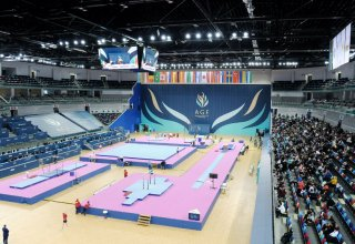 Japanese gymnast grabs gold in horizontal bars event