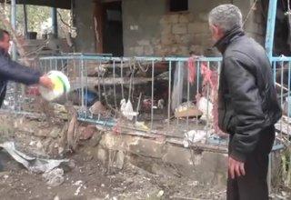Armenia targeting Azerbaijan's civilians –defense ministry