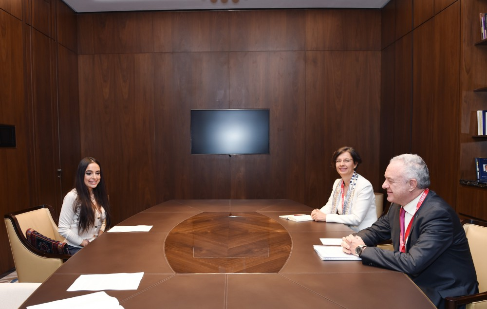 Vice-president of Heydar Aliyev Foundation meets with FAO officials