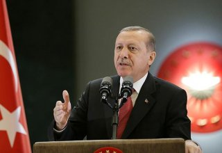 Erdogan: Purge of Gulenists from state will continue