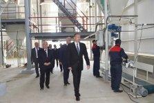 Ilham Aliyev inaugurates Yalama Agropark - Gallery Thumbnail