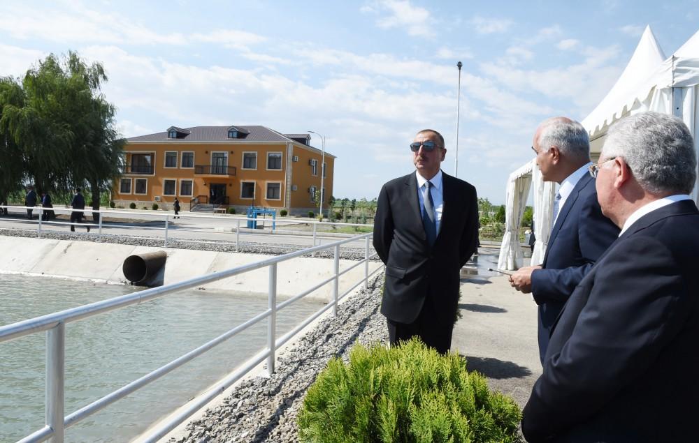Президент Ильхам Алиев принял участие в открытии Яламинского агропарка (ФОТО) - Gallery Image