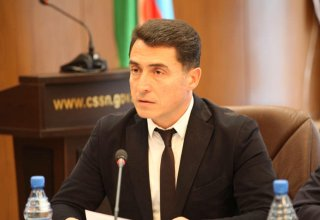 Radical opposition rallies aim to disrupt stability in Azerbaijan: MP