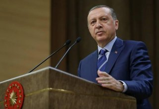 Concerns of some OSCE MG co-chairing countries don't matter - Erdogan