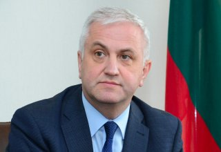 Ambassador: Azerbaijan continues to be Lithuania's important partner