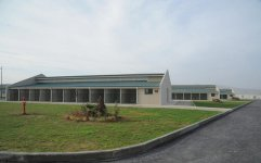 IDEA Animal Care Center officially begins to operate in Baku (PHOTO) - Gallery Thumbnail