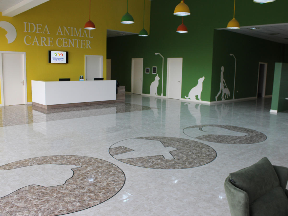 IDEA Animal Care Center officially begins to operate in Baku (PHOTO)