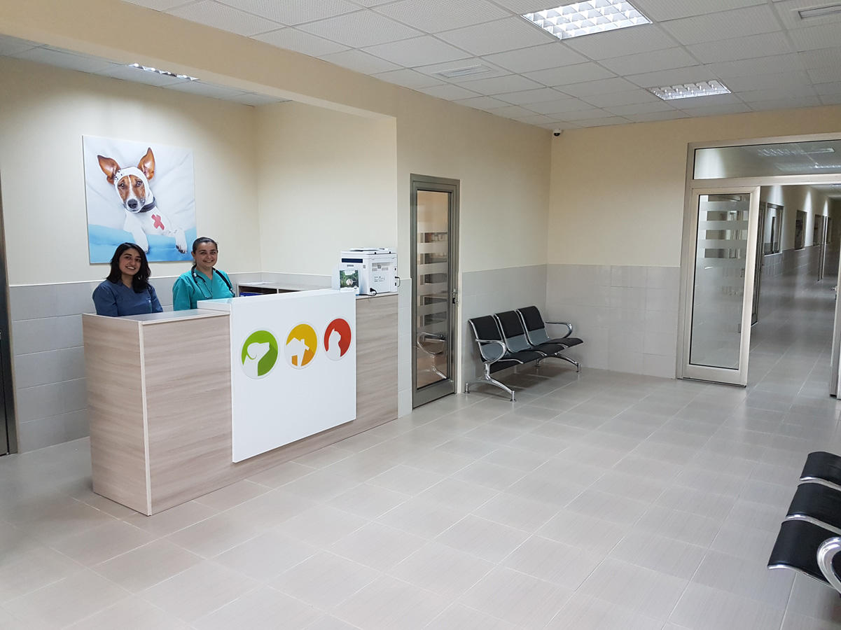 IDEA Animal Care Center officially begins to operate in Baku (PHOTO) - Gallery Image