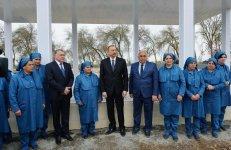 Президент Ильхам Алиев ознакомился с хлопковым полем в Саатлинском районе (ФОТО) - Gallery Thumbnail