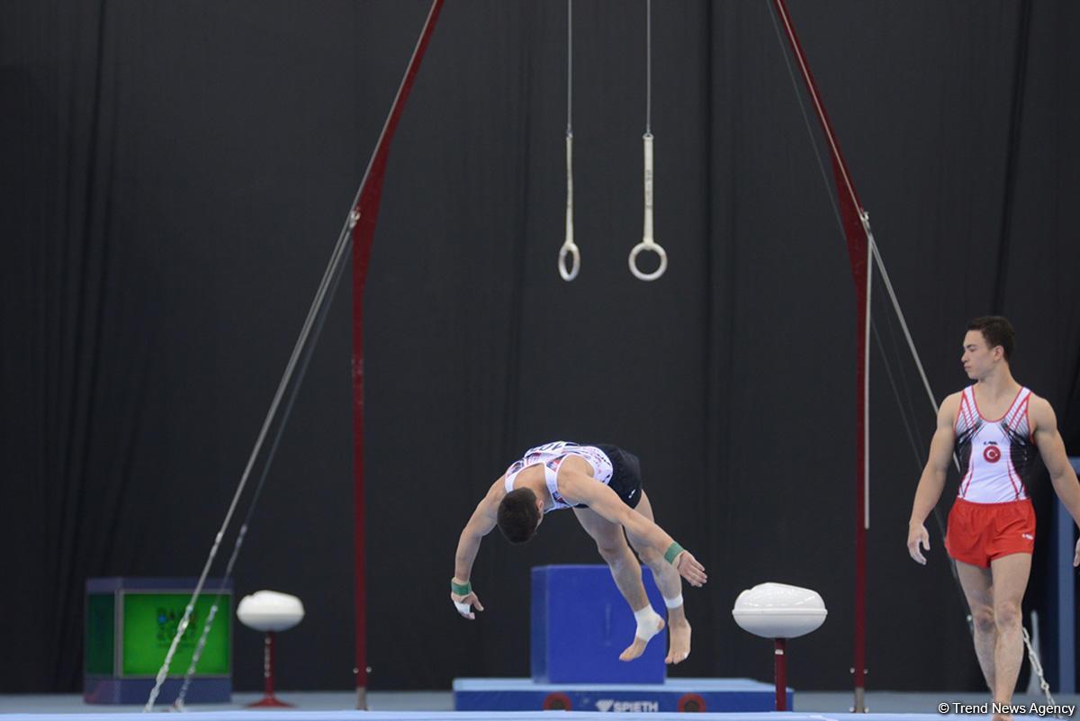 Türk sporculardan jimnastikte 3 altın, 2 bronz - Gallery Image