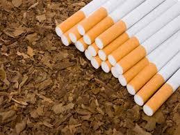 Азербайджану необходимо привлечь зарубежных специалистов для повышения качества табака
