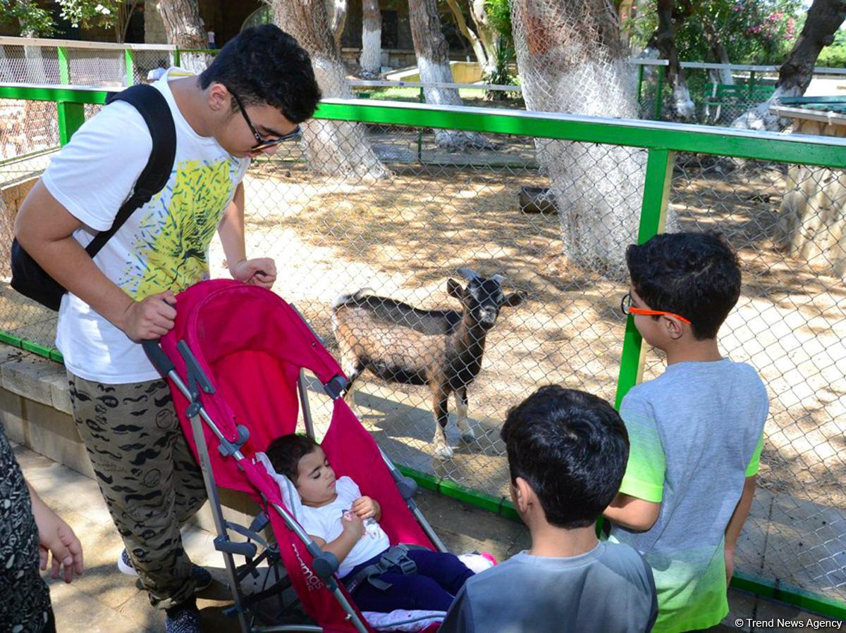 Turistlərin daha çox üz tutduğu məkanlardan biri Bakı Zooparkıdır (FOTO) - Gallery Image