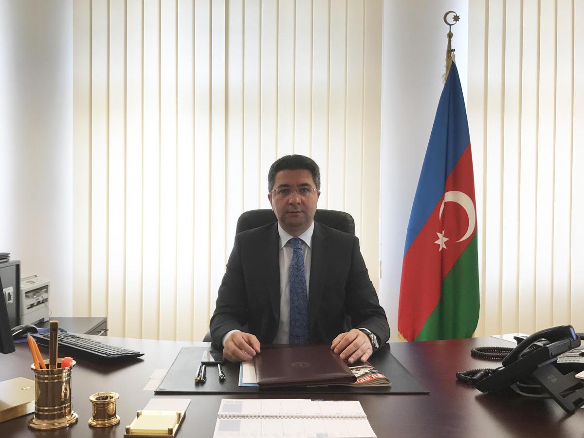 Azərbaycan Almaniya investisiyalarının cəlb edilməsində maraqlıdır (MÜSAHİBƏ)