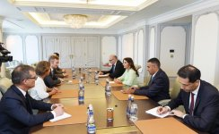 First VP Mehriban Aliyeva meets French minister of state - Gallery Thumbnail