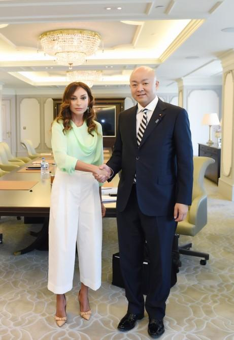 First VP Mehriban Aliyeva meets Japan's parliamentary vice-minister for foreign affairs (PHOTO) - Gallery Image