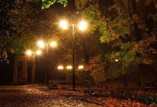 Осенняя ночь тянется медленно, кажется, ей не будет конца…- эмоции Нуры Сури и Эльшада Шукюрова (АУДИО)