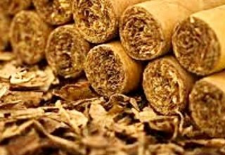 Azerbaijan plans to increase Virginia tobacco production