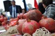 Azerbaycan'da nar festivali (Fotoğraf) - Gallery Thumbnail