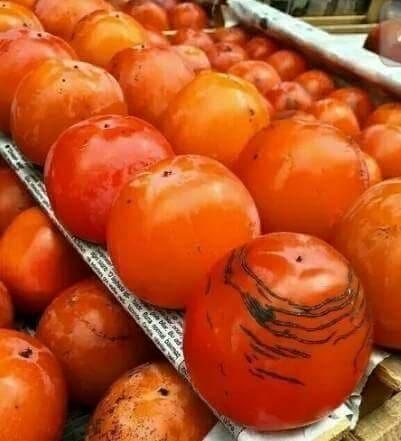 Persimmons export from Uzbekistan increases for 9M2020